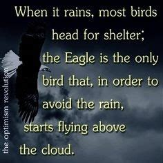 Eagle Scout Quotes Funny