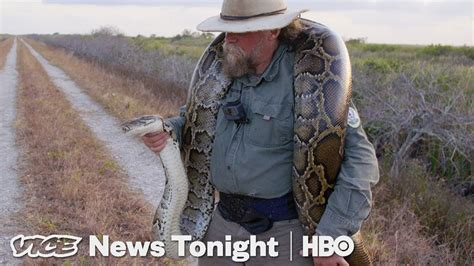 The Bounty Hunters Catching Pythons In Florida (HBO) - YouTube