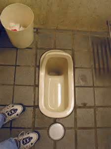 Majority of toilets in Japanese schools are squat toilets