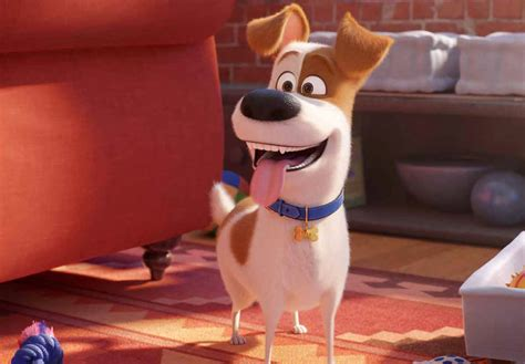 Patton Oswalt on The Secret Life of Pets 2 and Veronica