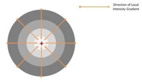 SRRF Stream – Real-Time Super-Resolution Radial
