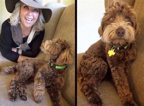 Paula Deen from Celebrity Pets: Miley Cyrus' Puppy, Taylor
