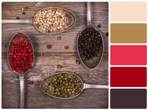 Choose the Best Colors and Fonts for Your Brand | Bplans