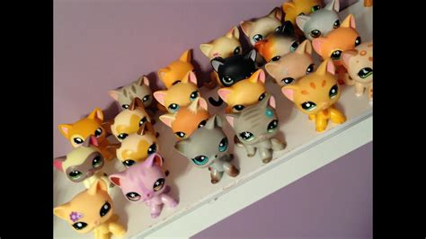 all my lps shorthair cats - YouTube